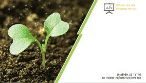 Nature, un modele PPTX d'une petite plante verte pour vos presentations de nature